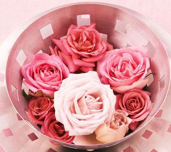 Love Roses.jpg